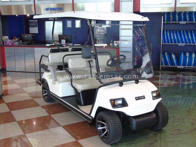 2020 E-Car